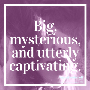 Big, mysterious, and utterly captivating.